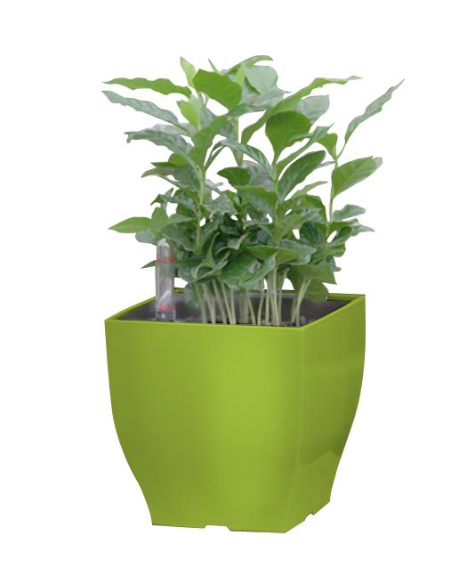 Samozavlažovací květináč G21 Cube mini zelený 13.5 cm