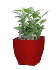 Květináč G21 Cube mini 13.5 cm, červený